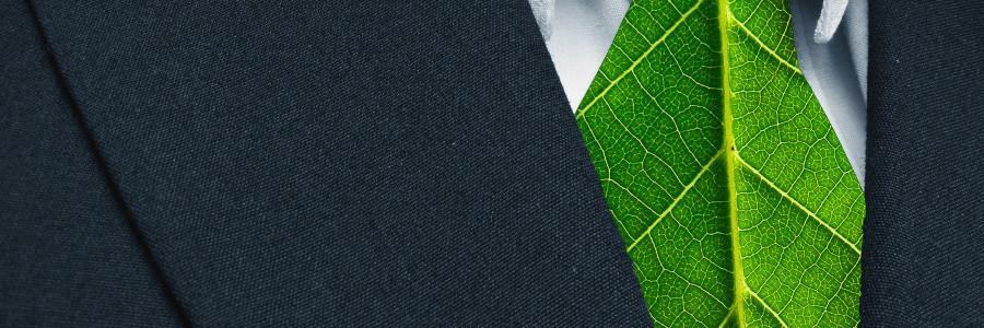 green energy money green builder